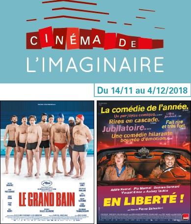 Programme cinéma du 14 novembre au 4 décembre
