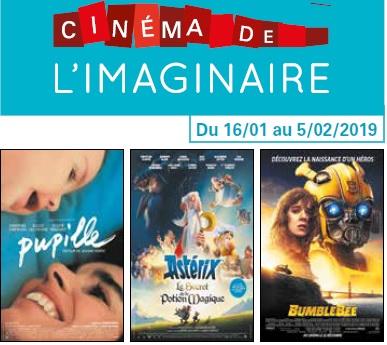 Programme cinéma du 16 janvier au 5 février 2019