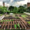 Agriculture urbaine : Les Jardins du Maingoval