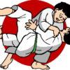 Compétition amicale & Championnat de judo